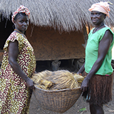 Women in Guinea-Bissau