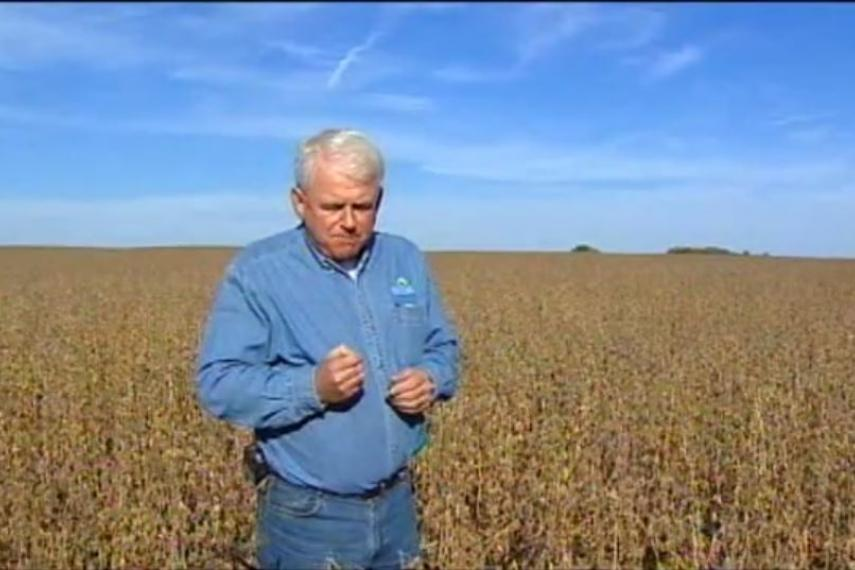 Capture d'écran du documentaire Le monde selon Monsanto