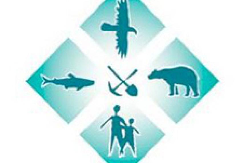 Mining Watch Canada logo