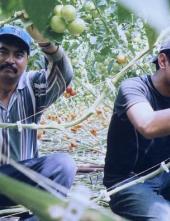 Scène du documentaire El Contrato