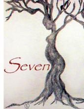 image promotionnelle pour Seven : une pièce de théâtre documentaire